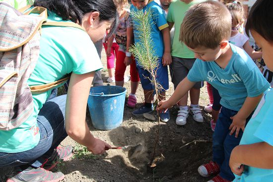 2015_Plantación_CEIP_Cervantes_005