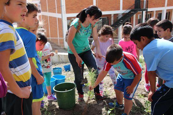 2015_Plantación_CEIP_Cervantes_009