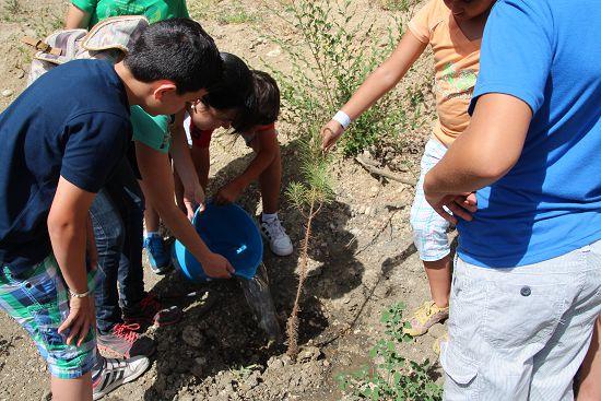 2015_Plantación_CEIP_Cervantes_010