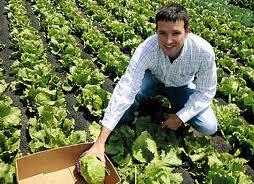 ayudas_empresas_agriculturas
