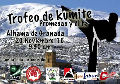 2016_cartel_trofeo_kumite_web